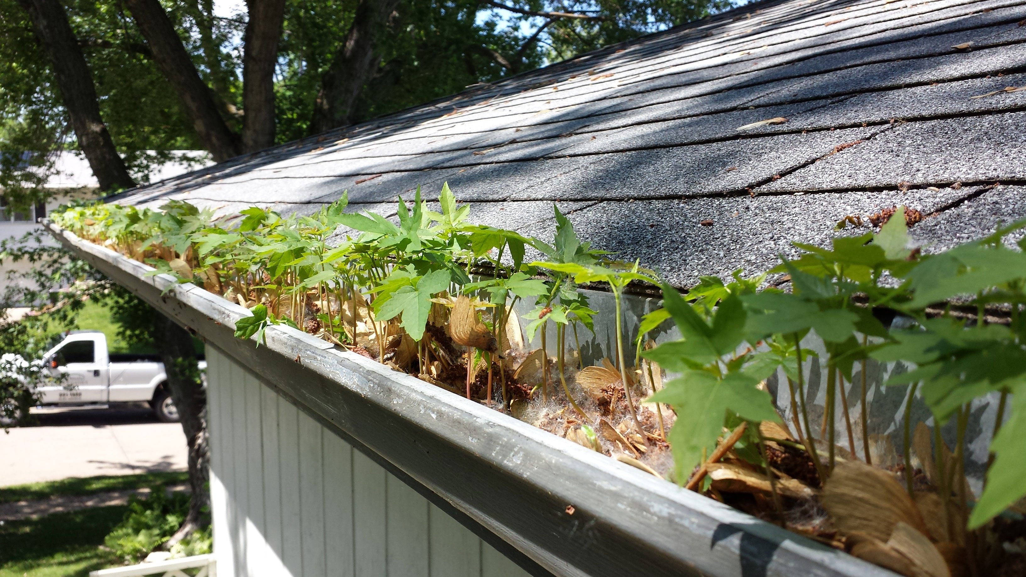 Gutter Cleaning And Maintenance By Omaha Organics Lawn Care
