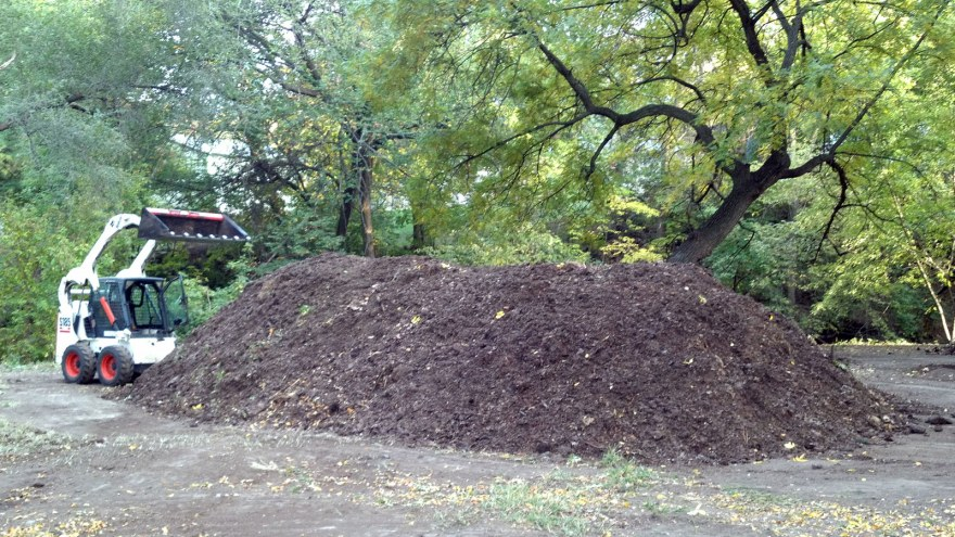 Composting Pile