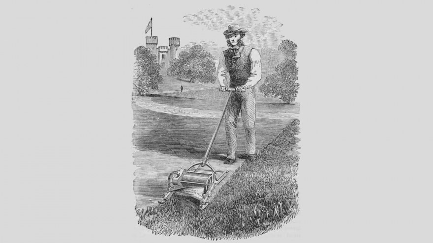 Lawn History